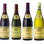Llega el momento de proar tanto esfuerzo y dedicación, es el momento de probar los vinos.