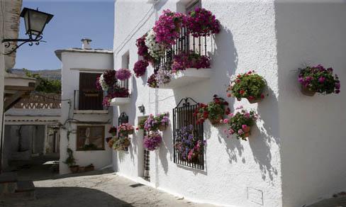 Casas adornadas con flores en Bubión.