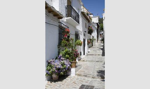 No lejos de Lanjarón, en Capileira, en plena Alpujarra granadina, calle típica.