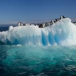 Olvídate del mundo… en la Antártida