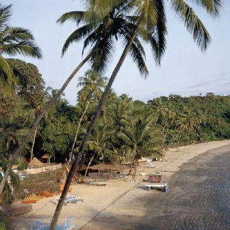 Goa: El exotismo tropical de la India.