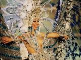 "Gran Canaria: Un mes entero ""carnavaliando"""