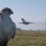 Aeropuertos con mejor Wi-Fi del mundo