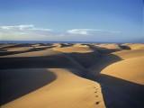 Las famosas dunas.