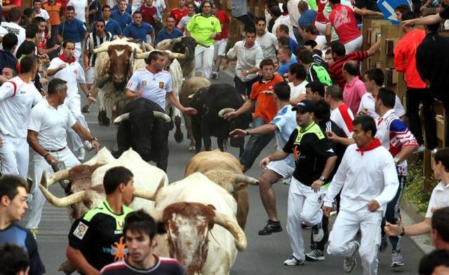 Tudela es mucho más que cogollos, espárragos y magníficas verduras. Tamién es fiesta y toros. Sus encierros son famosos. (Foto Archivo Turismo Reyno de Navarra)