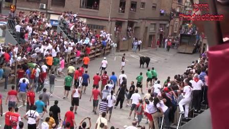 La fiesta del toro ensogado de Lodosa es eminentemente popular.