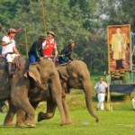Tailandia: La Copa del Rey de Polo en Elefante,se celebra en Hua Hin