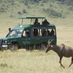 Serengeti, safari en el África ecuatorial