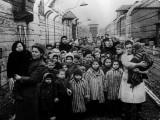 Supevivientes al horror nazi.