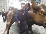 Torito en Nueva York