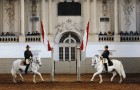 Escuela Española de Equitación de Viena (Foto: © WienTourismus / Spanische Hofreitschule / Herbert Graf)