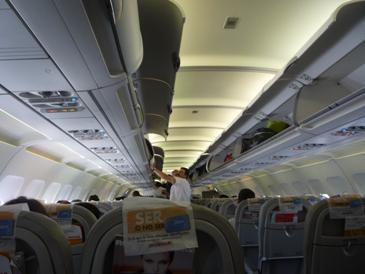 Animales en aviones